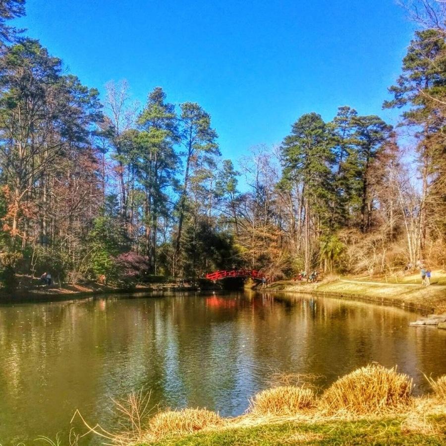 Matthew Clark's photo of Explore the Sarah P. Duke Gardens