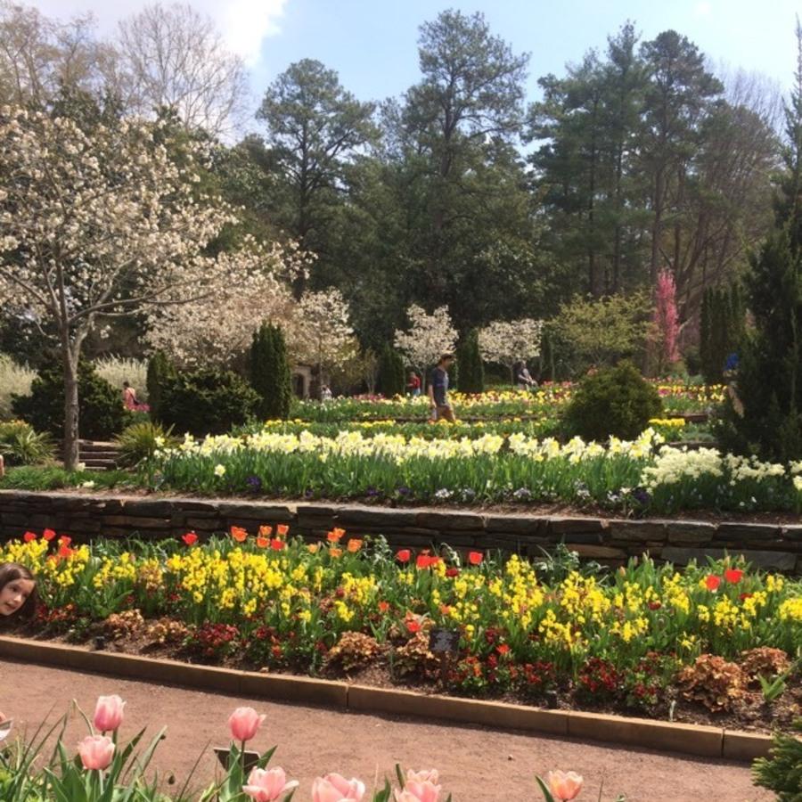 Eva Kelly's photo of Explore the Sarah P. Duke Gardens