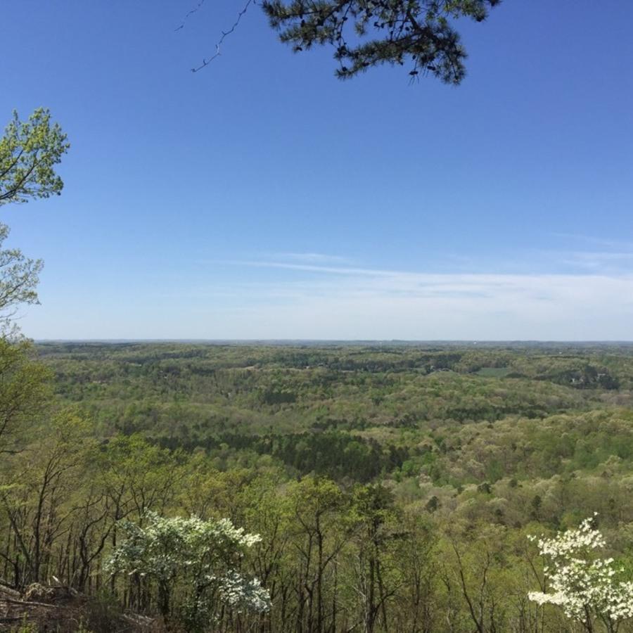 Pj Accurso's photo of Swim, Hike, or Bike at Morrow Mountain