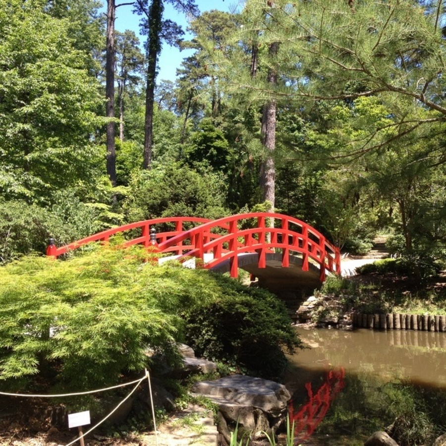 Alicia Midland's photo of Explore the Sarah P. Duke Gardens