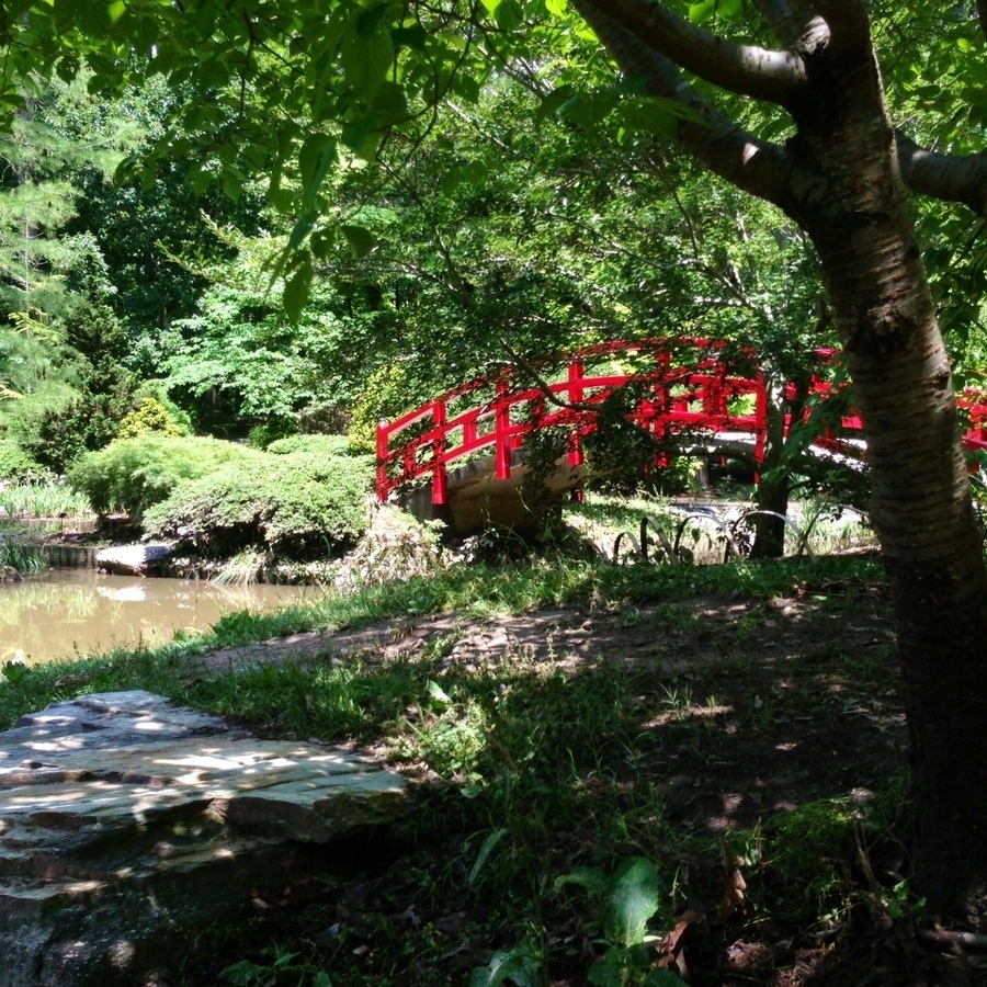 Brittany Brower's photo of Explore the Sarah P. Duke Gardens