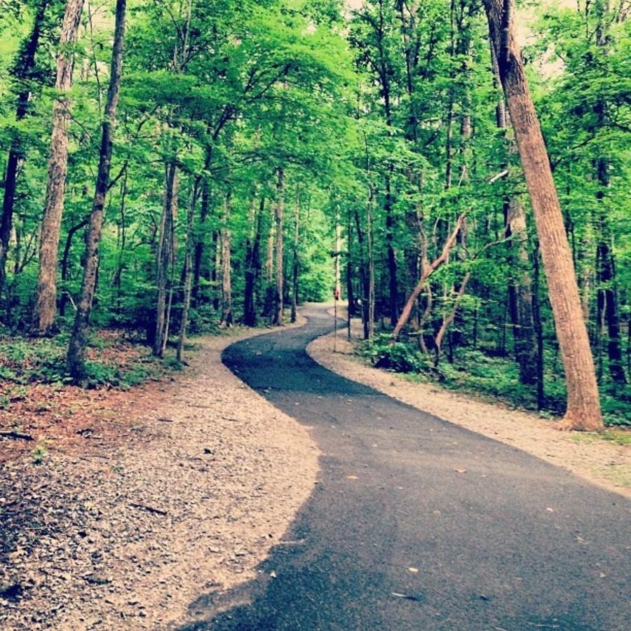 Run Around Lake Johnson Lake Johnson Park