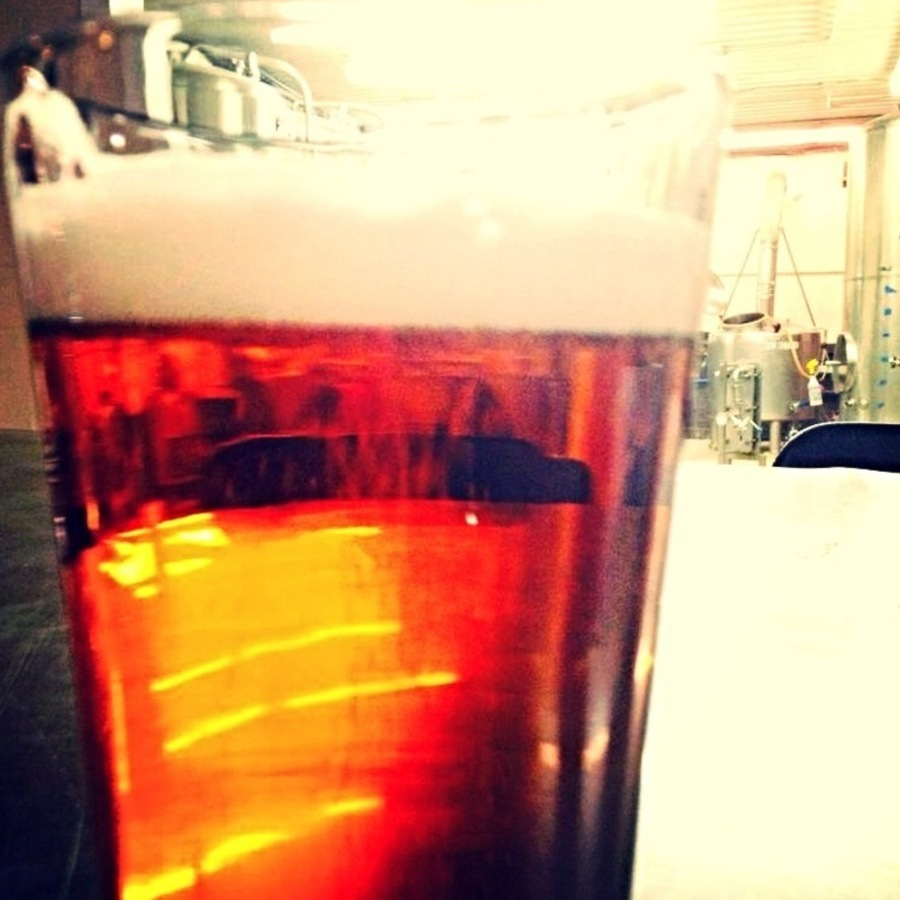 Chana Lynn's photo of Grab a Drink at Gizmo Brew Works
