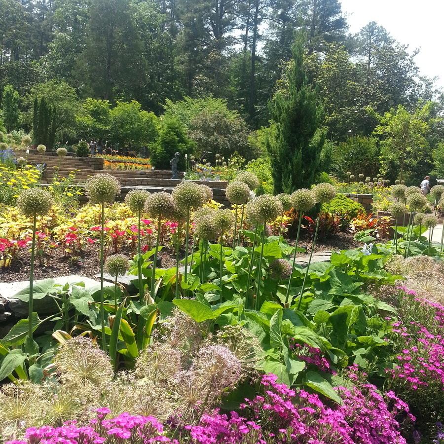 Grecia Valeria Palma's photo of Explore the Sarah P. Duke Gardens