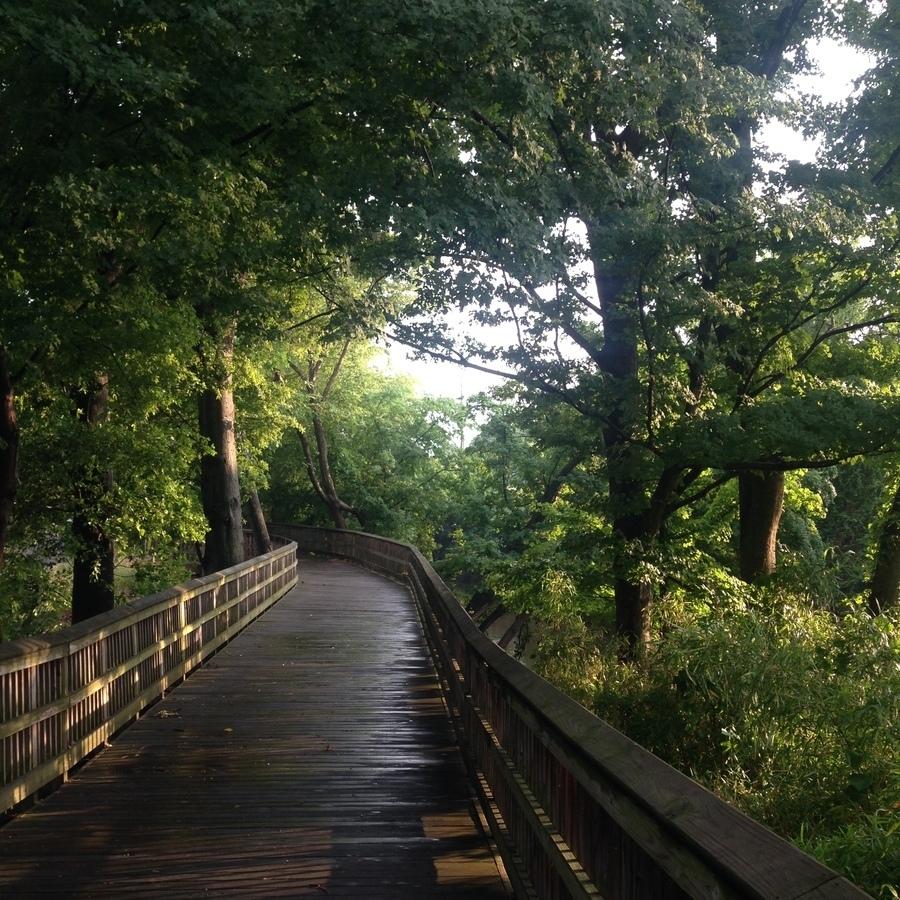 Amanda Bittner's photo of Run The Crabtree Creek Trail