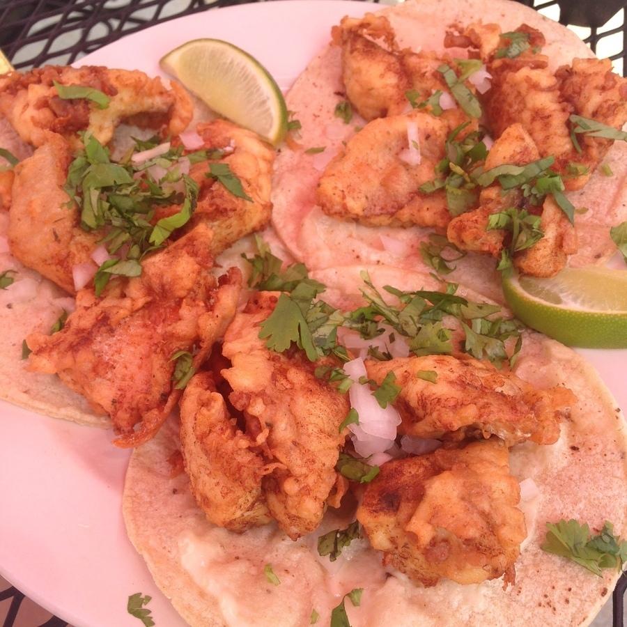 Amanda Bittner's photo of Bite Into a Taco at Gringo A Go-Go