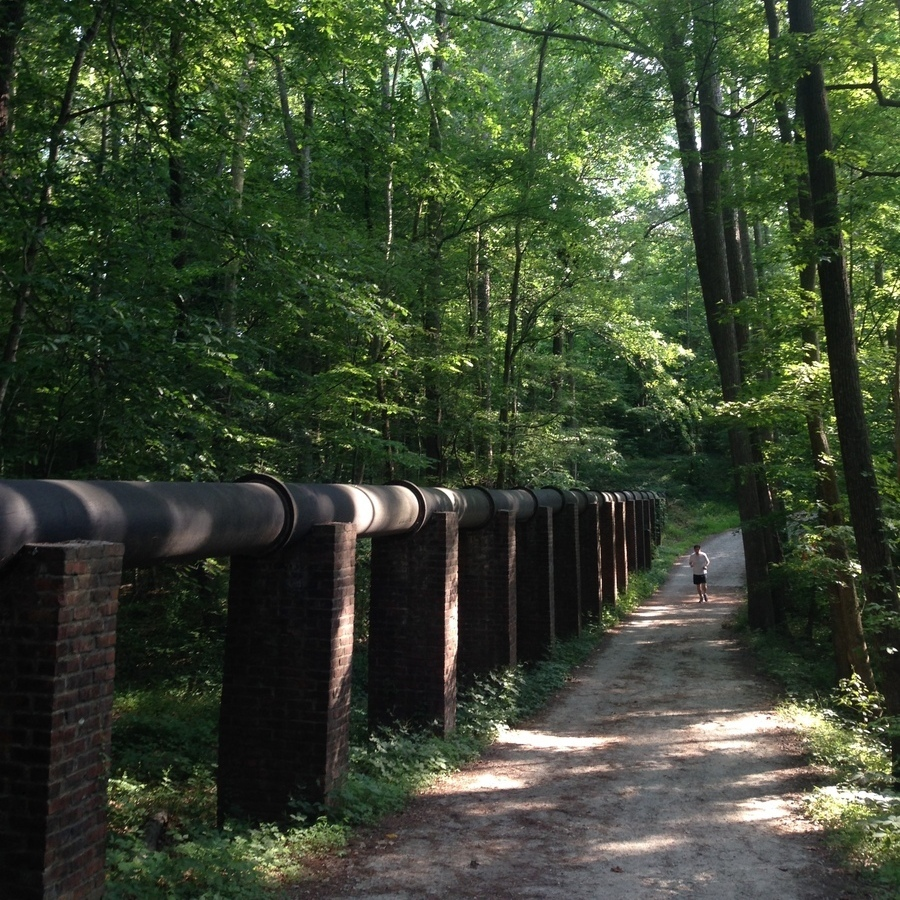 Amanda Bittner's photo of Run the Al Buehler Trail