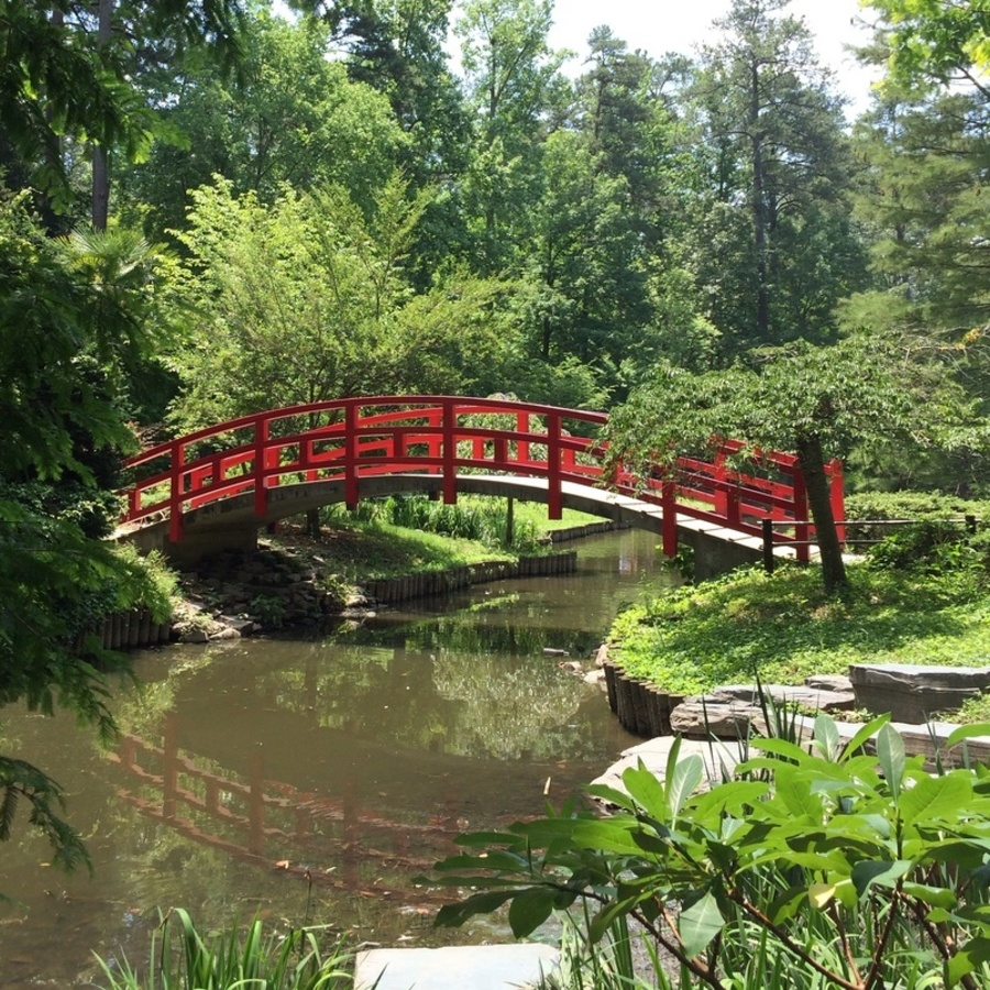 Lauren Ulmer's photo of Explore the Sarah P. Duke Gardens