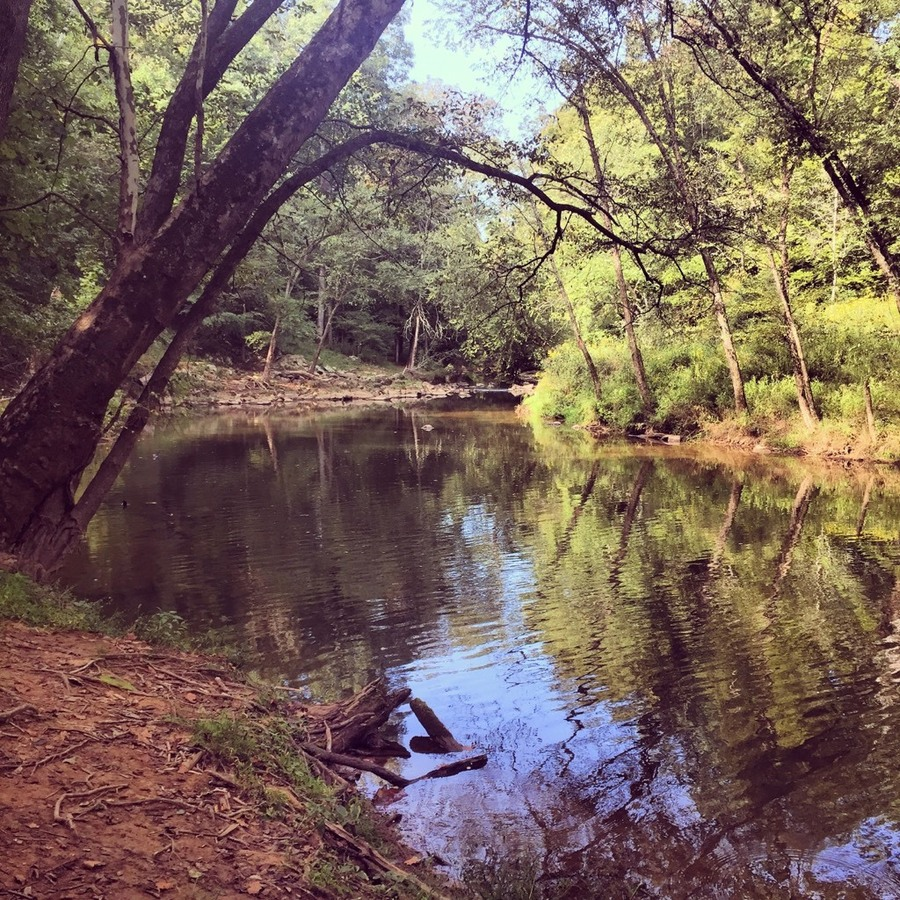 Jen Tremblay's photo of Local Escape: Bask in the Glory of the Eno