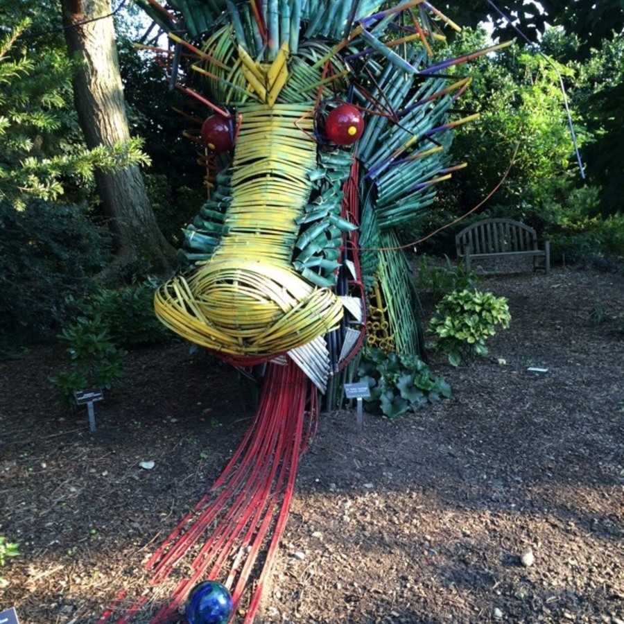 Nyima's photo of Escape into Nature at the JC Raulston Arboretum