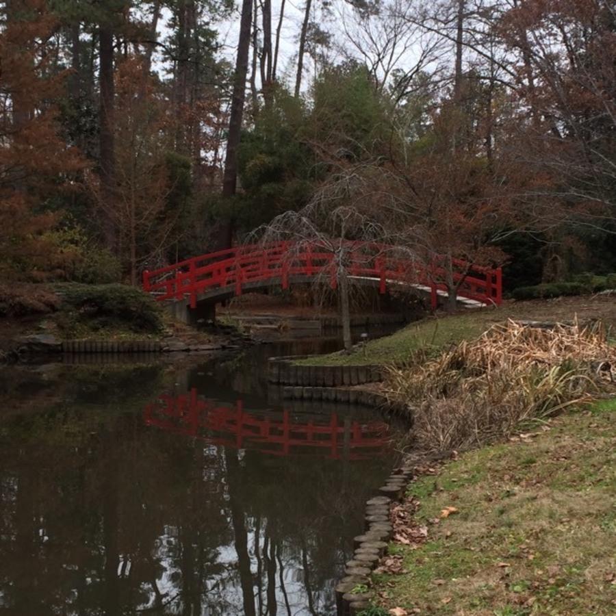Nyima's photo of Explore the Sarah P. Duke Gardens