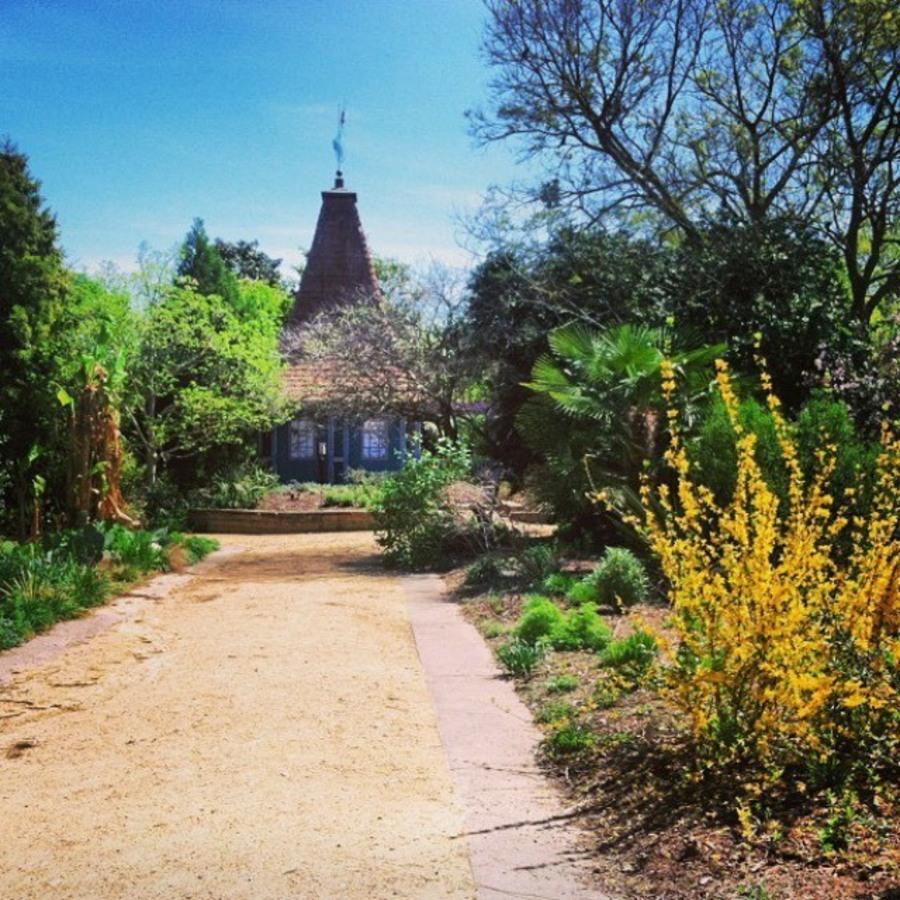Sidney Austin Havas's photo of Escape into Nature at the JC Raulston Arboretum