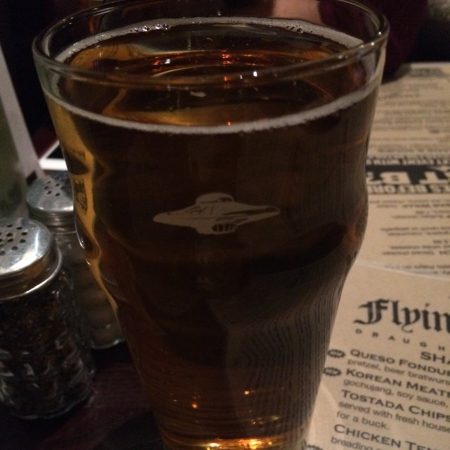 Lindsay Trant's photo of Start a Beer Drinking Journey at The Flying Saucer