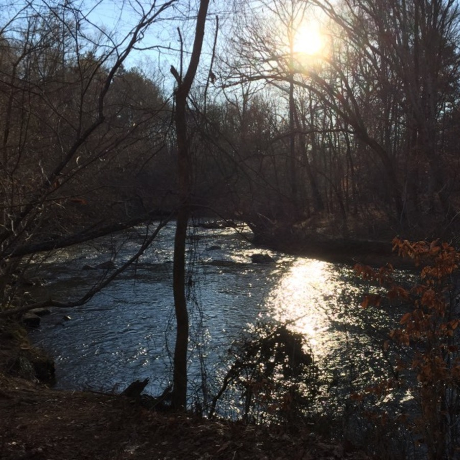 Linda Poplawski's photo of Local Escape: Bask in the Glory of the Eno
