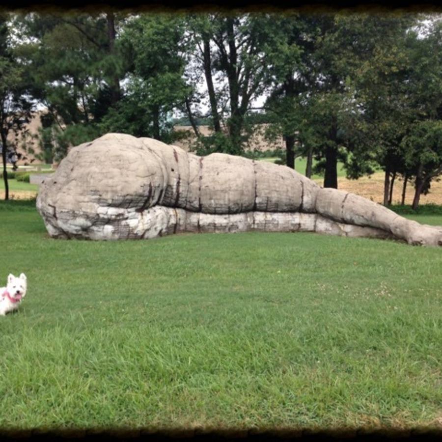 Lauren Ashley Whatley's photo of Visit the NC Museum of Art Park
