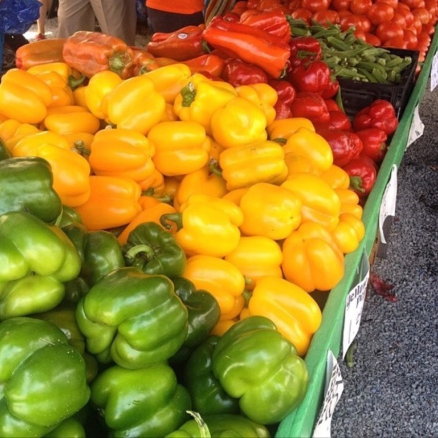 Allison Troyano's photo of Shop CLT Local at King's Drive Farmers Market