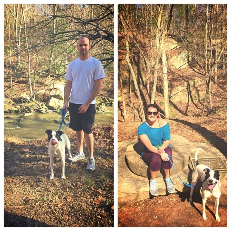Brittany James's photo of Go For A Run On Company Mill Loop Trail