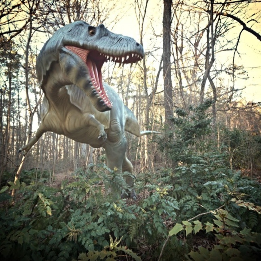 AG Buedel's photo of Stroll Alongside Life-Size Dinos & More at The Museum of Life + Science