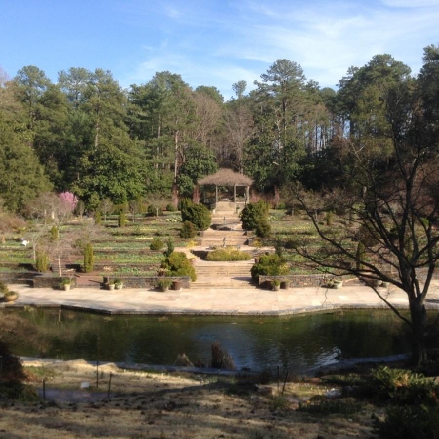 Julia Martens's photo of Explore the Sarah P. Duke Gardens