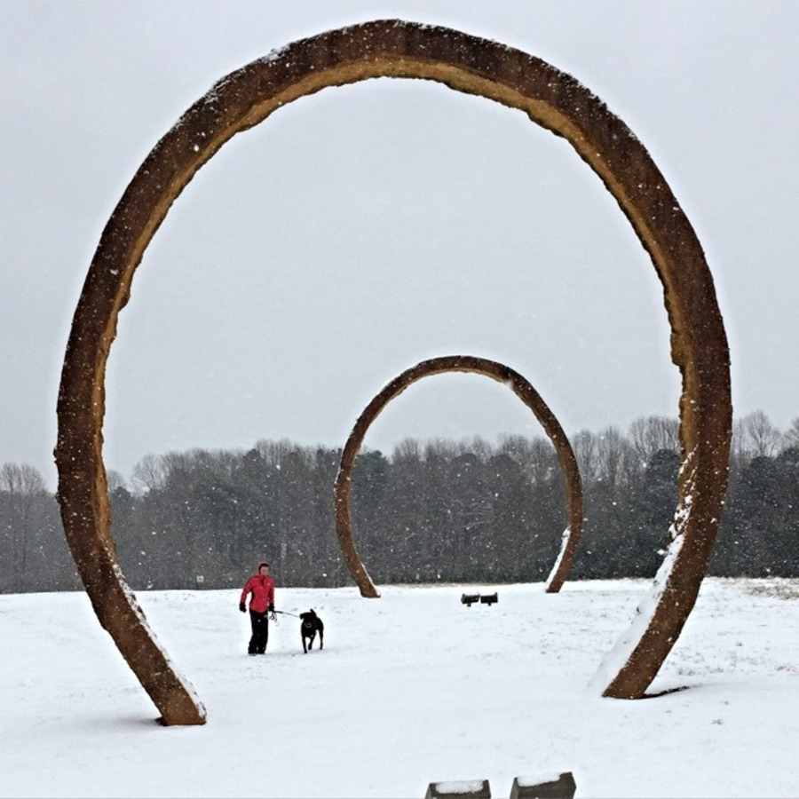 Shane Norris's photo of Visit the NC Museum of Art Park