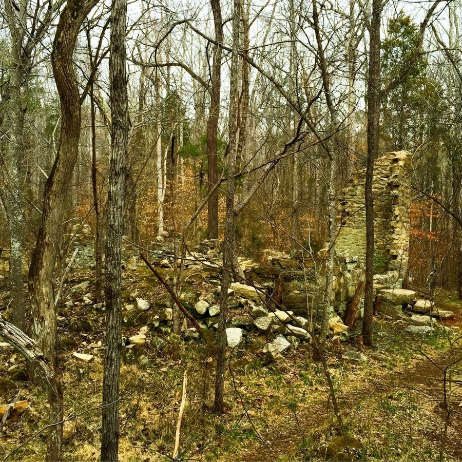 Pj Accurso's photo of Walk Through the Robinson Rock House Ruins