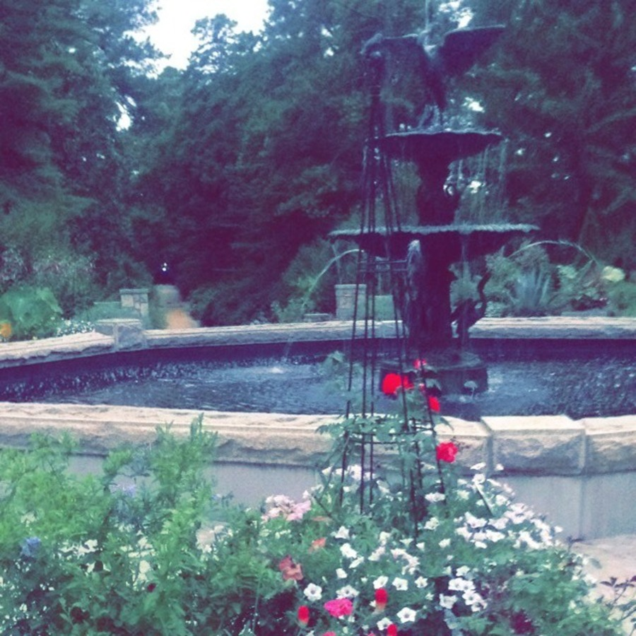 Hannah Leigh's photo of Explore the Sarah P. Duke Gardens