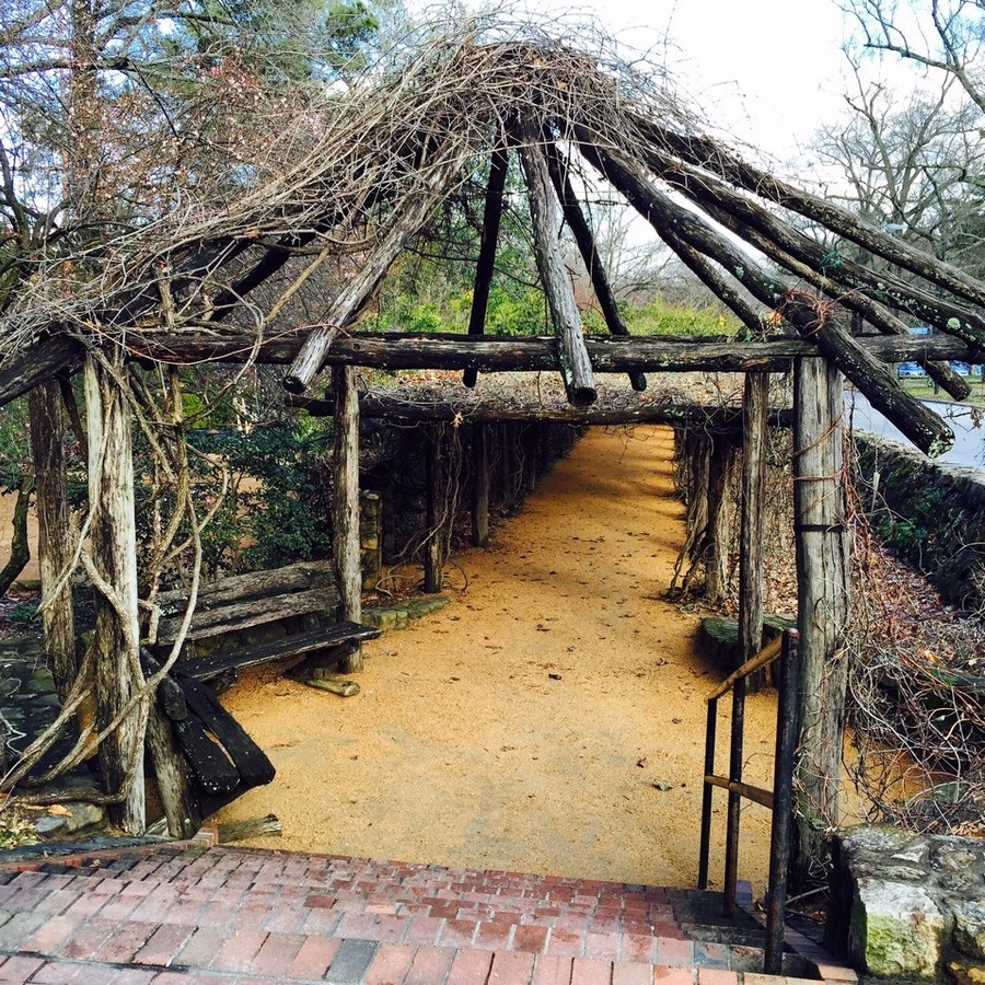 Alicia Barry's photo of Stroll Through Coker Arboretum